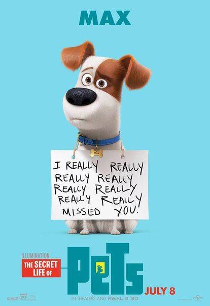 Постер - Тайная жизнь домашних животных: 414x604 / 31 Кб