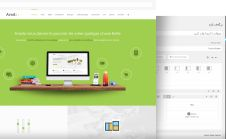 setup and customize avada theme for your website