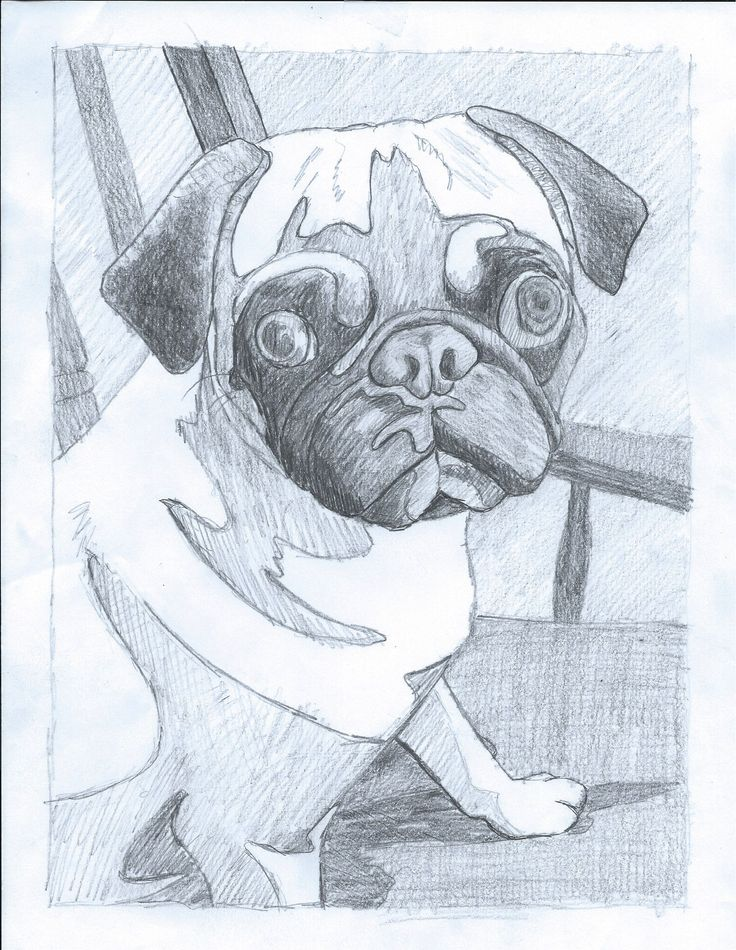 """In the previous tutorial,Your Pet """"Photo to Art Quilt"""" Tutorial Part 1, we finished with a Value Sketch and a Master (line drawing). From these we will create pattern pieces,choose fabric and sta..."""