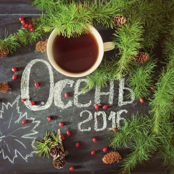 К каждому придёт счастье. И не обязательно в ночь со вторника на среду. Не обязательно в феврале или июле. Не обязательно в хорошую погоду. Но обязательно вдруг.  #myfavoritecup #good #happy #inspiration #вдохновение #morning #утро #tea #cup #rkfdeyz #coffee #autmn ☕