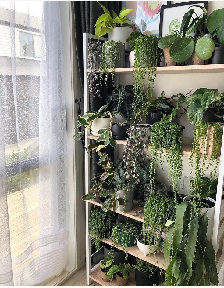 Erstellen Sie eine Ecke für Ihre Pflanzen und res…