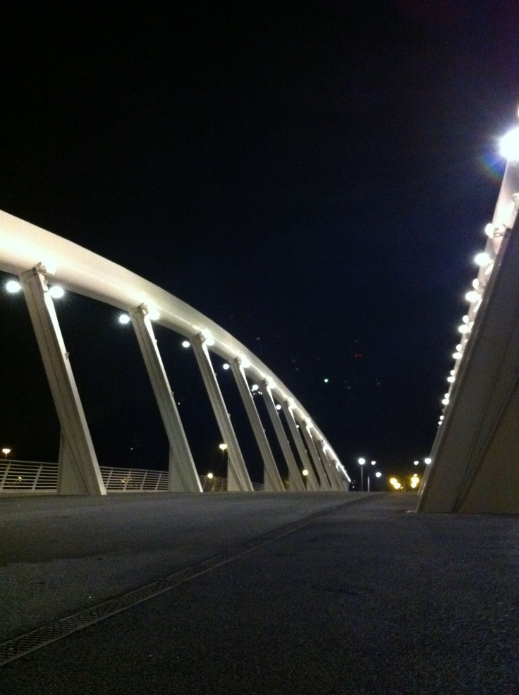 Music Bridge, Rome - Italy