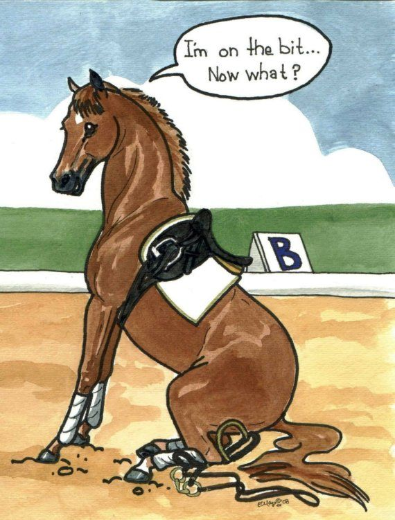 #ArabianHorses #Humor #ArabianHorseAssociation