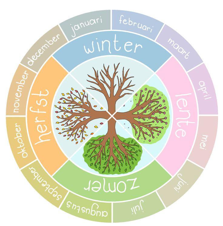 Jaarkalender met seizoenen - boom