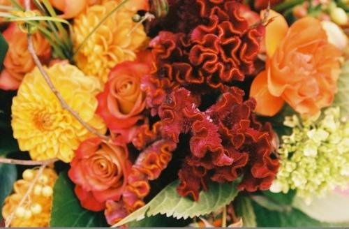 Flowers, Red, Centerpiece, Orange, Yellow, Gold, Fall, Flower, Sasha souza events