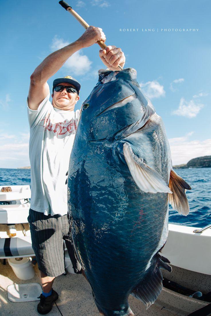 https://flic.kr/p/TGvzL5 | Fishing, Port Lincoln - South Australia | Fishing, Port Lincoln - South Australia