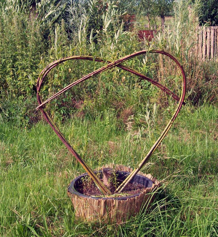 lebendes weidenherz - living heart planted with willows
