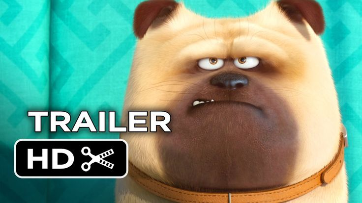 1st Teaser For 'The Secret Life Of Pets' reveals what fluffy does when we're away.