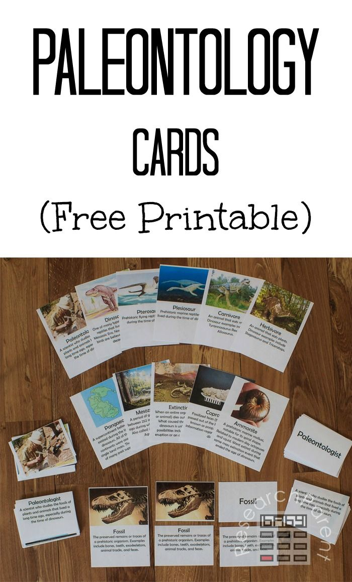 Paleontology Cards - Free, printable, Montessori-inspired cards featuring terms such as dinosaur, plesiosaur, pterosaur, Pangaea, and Mesozoic Era. Learning material for kindergarten or elementary-aged kids. via @researchparent