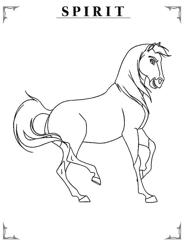 58 mejores imágenes sobre manualidades de caballos en ...