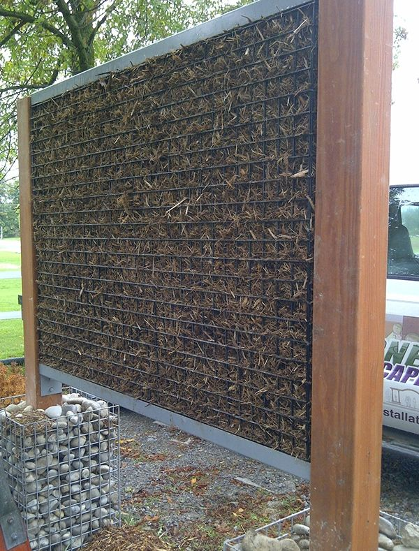 196 best images about la detail gabion baskets on pinterest for Living wall fence panels