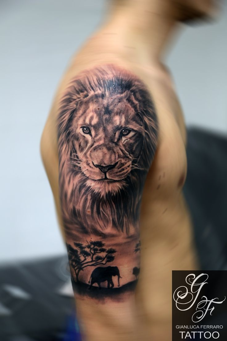 best 25 jungle tattoo ideas on pinterest ink drawings tiger