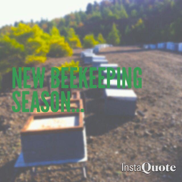 New beekeeping season
