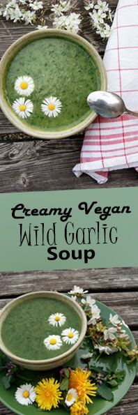 Creamy Wild Garlic Soup with Dandelion Leaves and Daisy Topping