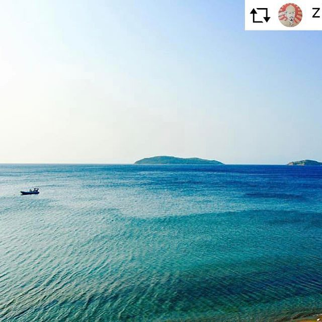 Dream of blue #skiathos #skathosrepost #beachlife #weloveskiathos