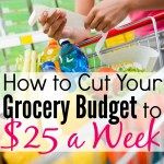 How to Cut Your Grocery Budget to $25 a Week FI