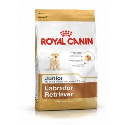 Royal Canin Labrador Retriever Junior - Breed Health Nutrition
