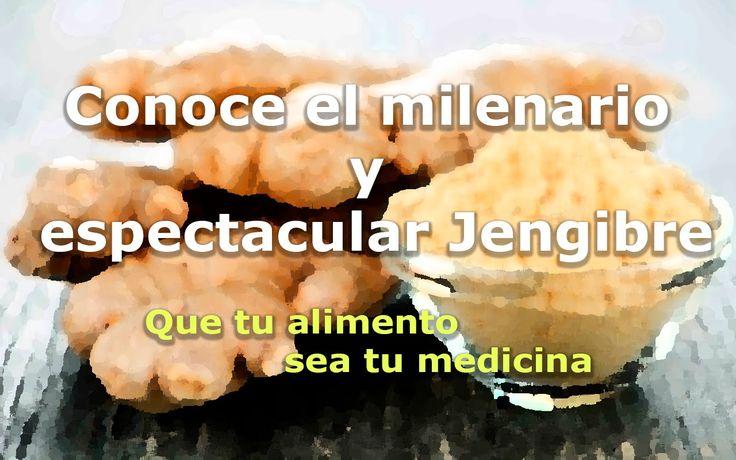 Conoce el milenario y espectacular Jengibre - Que tu alimento sea tu med...