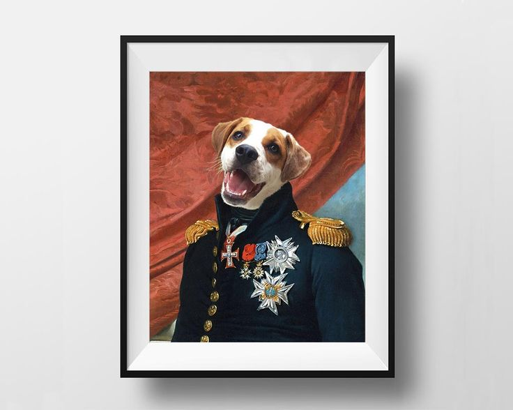 General Gerard - Royal Pet Portrait - Instant Download Printable - Digital File by dasfolDesign on Etsy