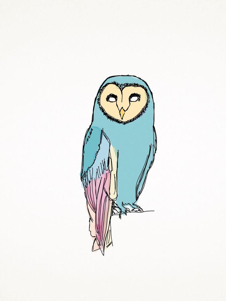 Kolorowa Hedwiga