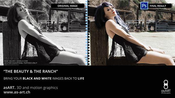 """Black & Colour Collection"""