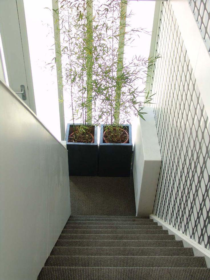 Een moderne trap met strak tapijt. Tapijt op de trap is mooi, maar ook veilig en het dempt geluid.