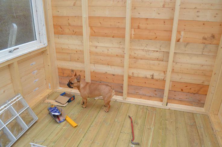 lille Borgny inspiserer sitt nye hus ;)