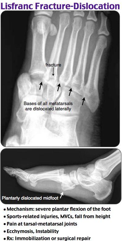 bushong worksheet radiology Flashcards and Study Sets ...