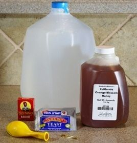 Used this recipe to make my first batch of mead. I will probably make a few more batches this way to see how it turns out and then start investing in some real homebrewing equipment. After reading several forums, this is supposed to work just fine to make it.    http://www.makemead.net/easy-bread-yeast-mead-recipe.aspx