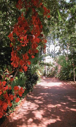 Key West garden Club - HomeKey West Gardens, Beautiful View, Atlantic View, Gardens Club, Allen Gardens, Botanical Gardens