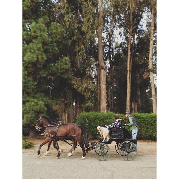 Monday on the mesa. Arroyo Grande, California, USA