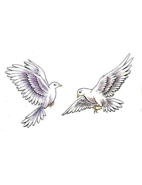 dove tattoos - Google Search