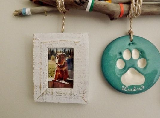 Wonderful display idea for your impression by @victoriaday2day. Get an impression for your pet at peartreeimpressions.com