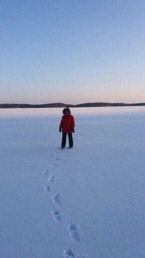 Leivonmäen Kansallispuisto, Joutsa, Keski-Suomi