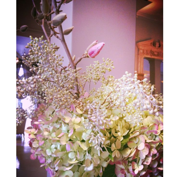 Antique hydrangeas, eucalyptus, and magnolia waiting to bloom! We're obsessed!