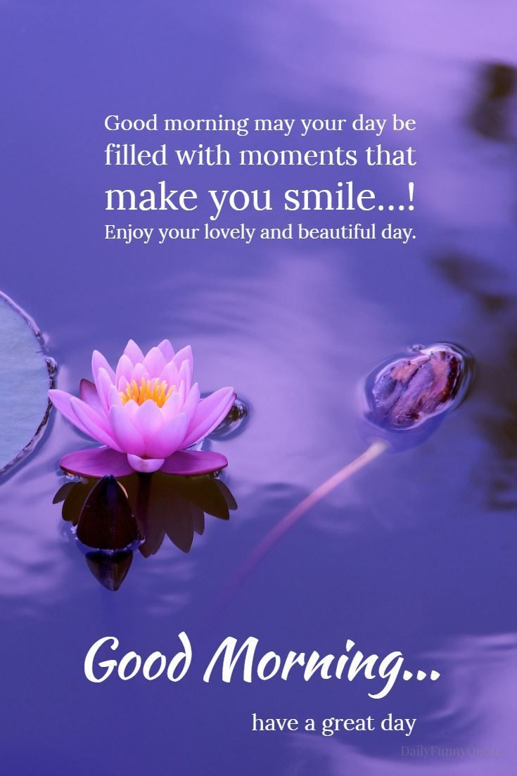 50 Good Morning Quotes And Wishes With Beautiful Images