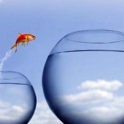 ARRIESGAR ES LA CLAVE PARA GANAR, ¿Ves el pez saltando de una pecera a otra? Se decidió a arriesgar para llegar a otra más grande. ¿Lo logrará? Las respuestas que podemos tener son muy variadas. Algunos dirán que sí, otros que no. Pero las posibilidades de respuesta no acaban allí.