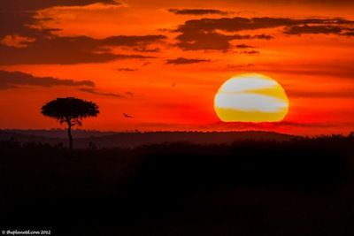 Kenya Photos, A Visual Journey