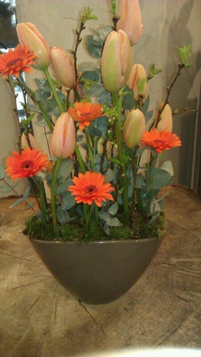 Kersebloesem + tulp