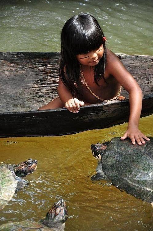 Spelen met schildpadden