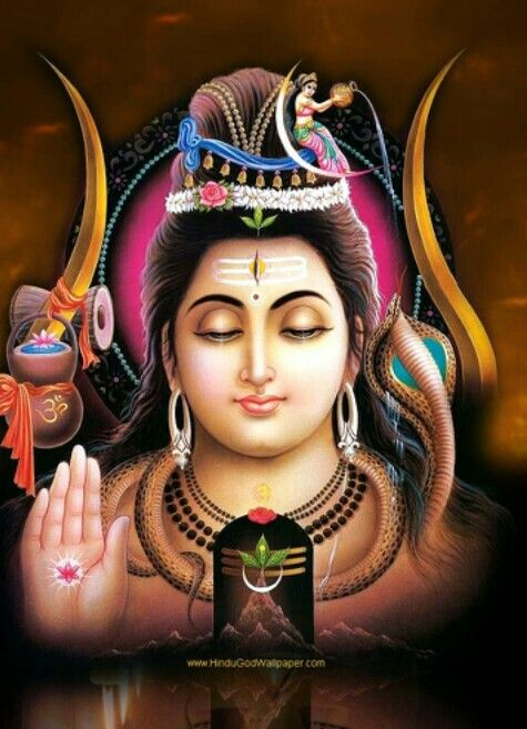 Pineal Gland =THE THIRD EYE= possessed by all of us..... however it's most active in LORD MAHADEV to make him  <<<<<त्रिकालदर्शी>>>>