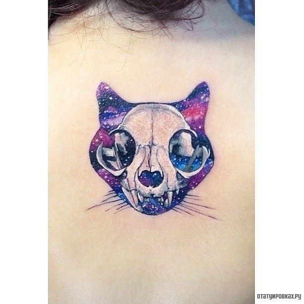 Фотография татуировки под названием «Кот с черепом животного»