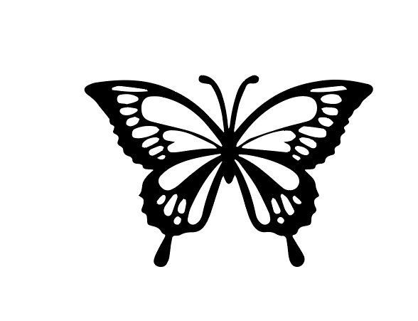 Scherenschnitt Bunte Schmetterlinge Als Fensterdekoration 11