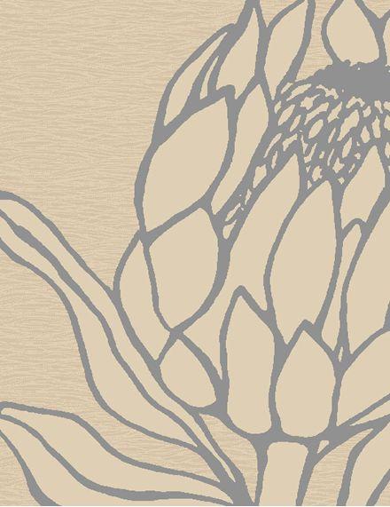 pretty protea