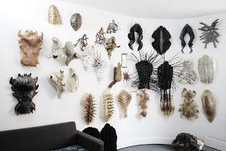 JORGE AYALA: [Ay]A STUDIO 2012_ Cabinet of Curiosities