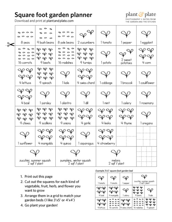 Printable square foot gardening cheat sheets | Plant & Plate