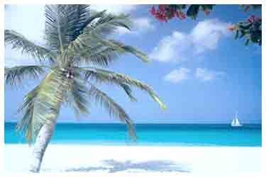 Panduan wisata holiday pada akhir zaman akhir tahun