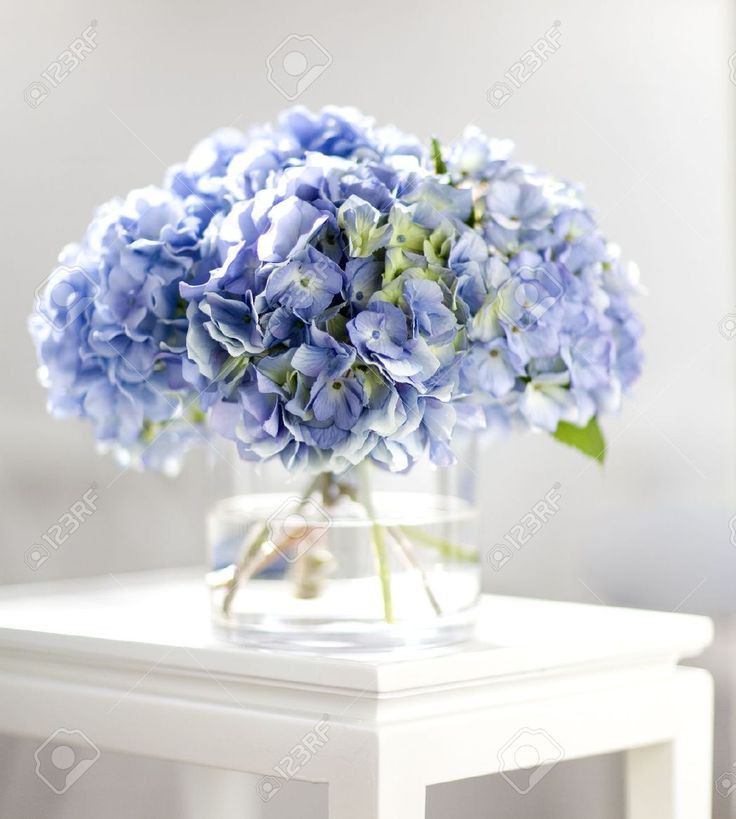 Bouquet hortensia banque d images et photos libres de