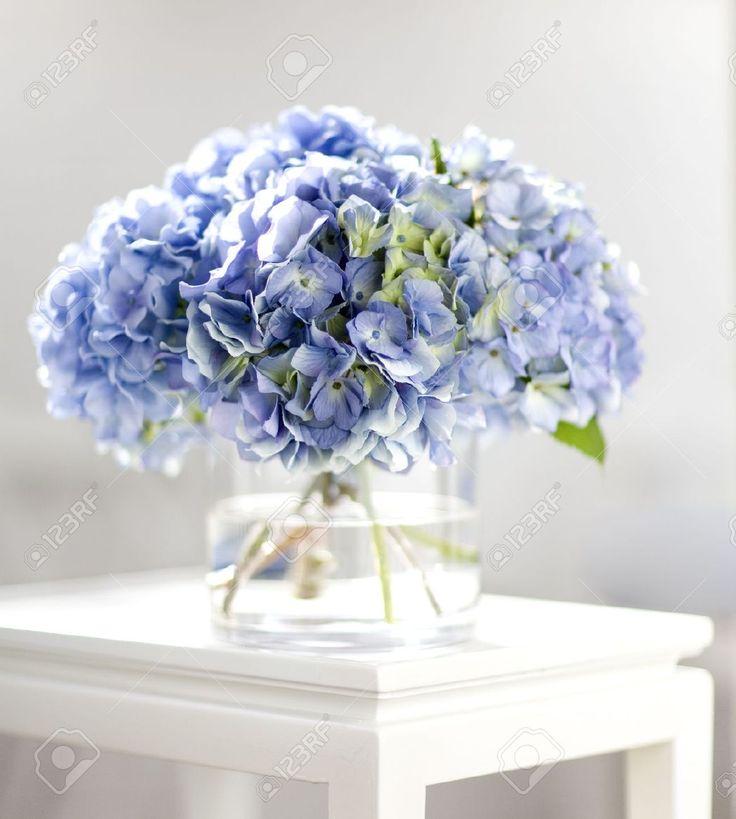Bouquet Hortensia Banque D'Images Et Photos Libres De Droits. Image 9481486.