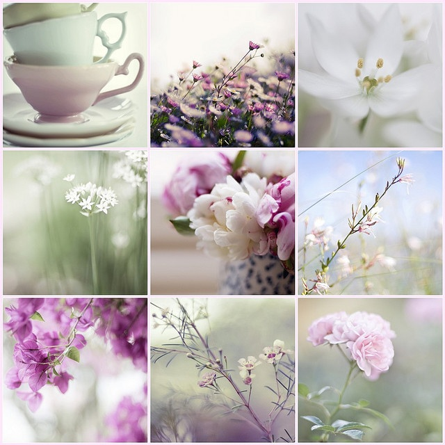 AS PER ANDREA via ❀ Flor do Campo ❀ THIS WEEK...we will seek after the most beautiful Big High Quality pins...COLOR THEME: SOFT PALETTE. LAVANDA, LILAC AND GREENS AND INSPIRATION A special thanks to ༺♥ Laura Ferry ♥༻ for the opportunity of choosing the color palette.